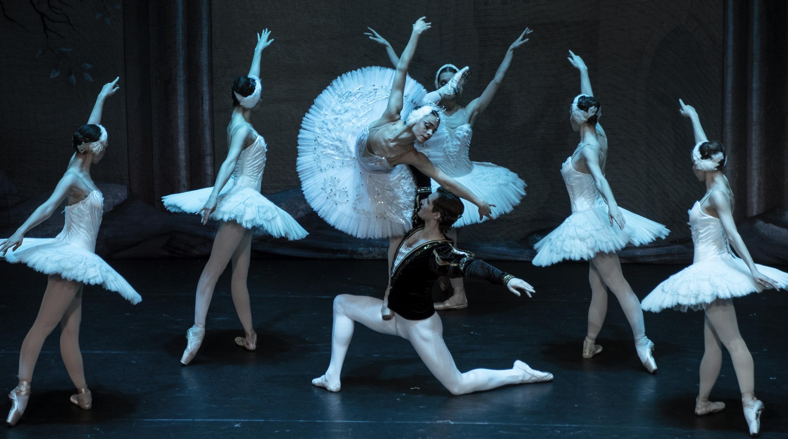 Lago de los Cisnes Ballet de Moscú